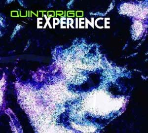 quintorigo-experience