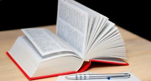 consultare dizionario